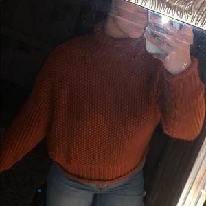 Semi cropped turtleneck sweater